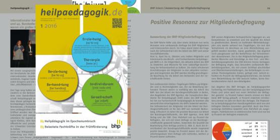 heilpaedagogik.de | 2016-1
