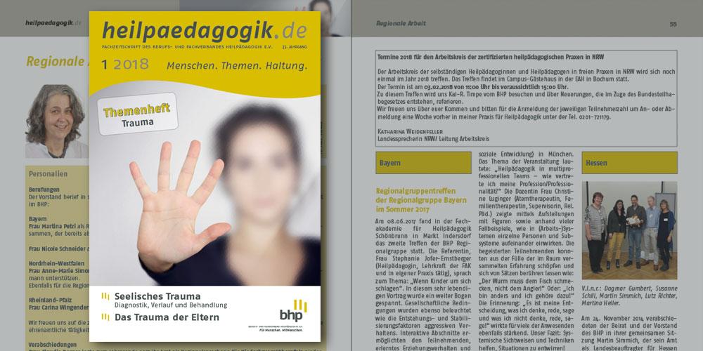 heilpaedagogik.de, Ausgabe 2018-1